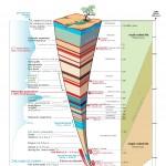 Evolution timescale