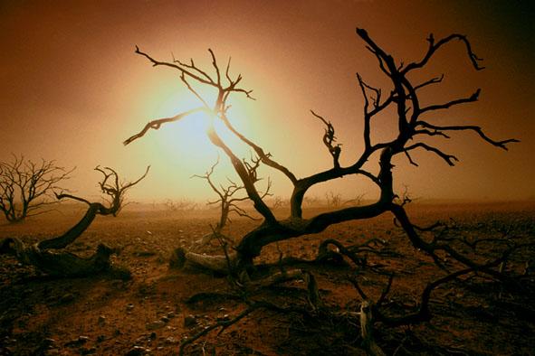 Desertification NT