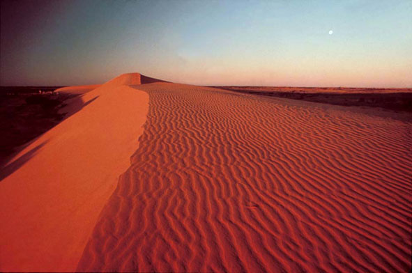 dune_sunset 2